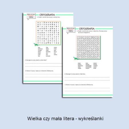 Ortografia bystrzaka cz. 2 (2)